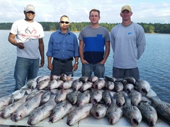 Four men results of chartered fishing trip Little River Guide Service Clarks Hill Lake GA Lake Strom Thurmond SC