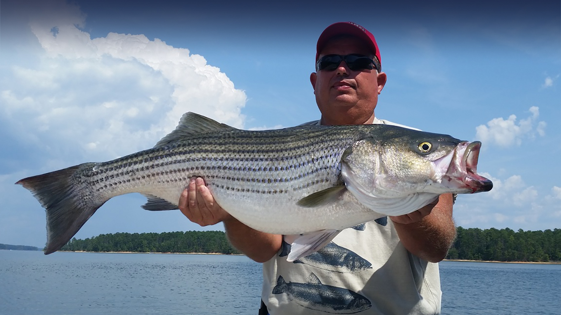 Man holding large striper bass Little River Guide Service Clarks Hill Lake GA Lake Strom Thurmond SC